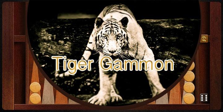تخته نرد آنلاین با دوستان در Tiger Gammon